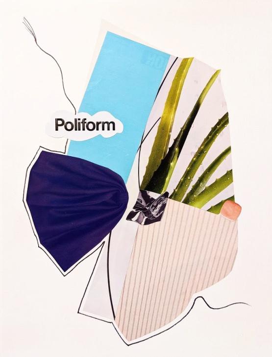 poliform_collage.jpg